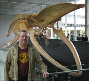 Dale and blue whale skeleton