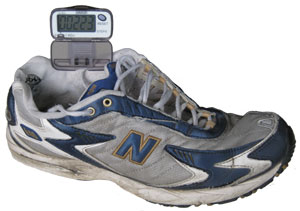 Pedometer and Shoe